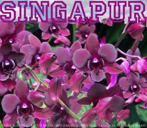singapur1